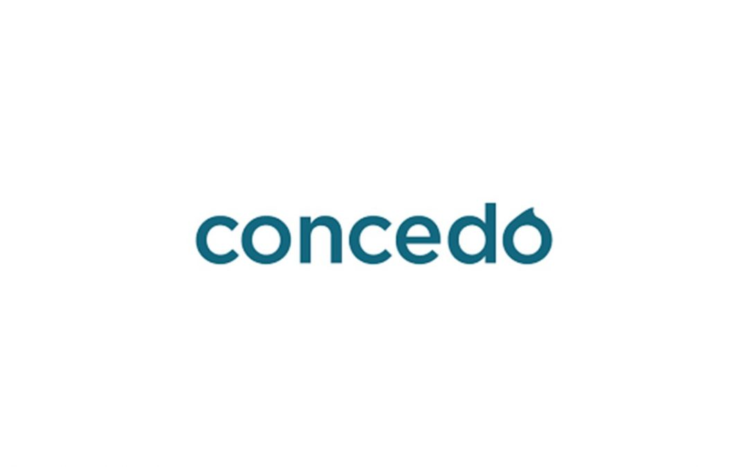 Research and Strategy project for Concido